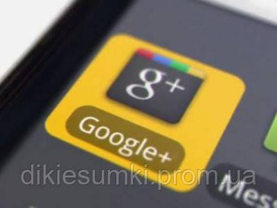 Дикие сумки в Google Plus