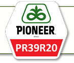 Семена кукурузы ПР39Р20 Pioneer
