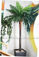 Искусственная пальма с натуральным стволом 3м
