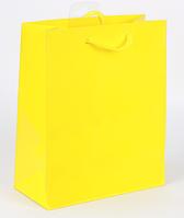 Пакет подарочный средний 18x23x10 DBV