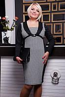 Трикотажное платье  Даниэла большие размеры 50-58