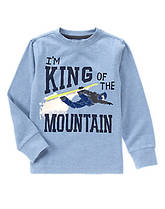 Реглан-лонгслив на мальчика  8, 10 лет Король гор Gymboree (США)