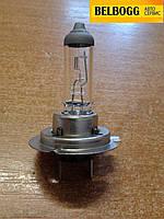 Лампочка ближнего света BYD F5 Suri, Бид Ф5, Бід Ф5