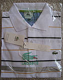 LACOSTE мужская футболка поло лакоста купить в Украине, фото 2