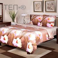 """Красивый комплект постельного белья """"Луиза"""" ТЕП бязь (100% хлопок) недорого."""