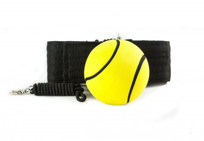 Боевой мяч на резинке Fight ball (файт бол) - Экипировка для бокса и единоборств в Киеве