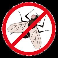 Эффективные средства борьбы с мухами