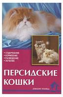 Персидские кошки. Непомнящий