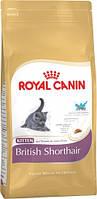 Royal Canin Kitten British Shorthair для котят породы британская короткошерстная в возрасте до 12 месяцев 400 гр