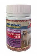 Мультивитамины, минералы для взрослых собак