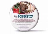 Foresto Bayer (Форесто) ошейник от блох и клещей для собак 70 см