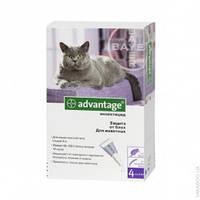Advantage Bayer капли против блох и клещей для кошек и кроликов
