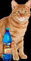 Вода  для котов при МКБ, 1л, Дивопрайд