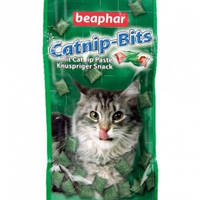 Catnip-Bits — Лакомство для кошек, с кошачьей мятой 300 штук