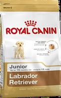 Royal Canin (Роял Канин) Labrador Retriever Junior сухой корм для щенков лабрадоров 3 кг