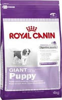 Royal Canin (Роял Канин) Giant Puppy 4 кг