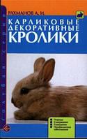 Карликовые декоративные кролики. Рахманов
