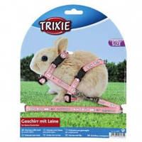 Поводок+шлея для крольчат 6265