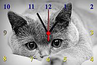 """Настенные часы из стекла  """"Котик"""" кварцевые"""