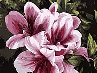 """KHO 2911 """"Розовая лилия"""" Роспись по номерам на холсте (без коробки) 40х30см"""