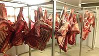 Подвесной путь для мяса в морозилную камеру, фото 1