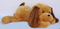 Собака Шарик 45 см медовая с коричневыми ушками.