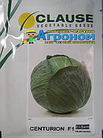Семена капусты  Центурион F1, 2500 семян, Clause (Клоз), Франция
