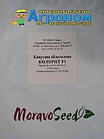 Капуста белокочанная Колорит F1, 2500 семян, Moravoseeds (Моравосид), Чехия