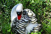 Лебедь для вашего сада.