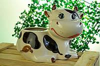 Кашпо коровка