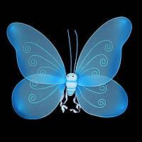 Крылышки бабочки, большие голубые