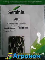 Семена огурца Маша F1, 1000 семян, seminis (Семинис), Голландия