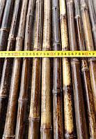 Бамбуковый ствол-К, д.1,8-2см, L2м, черный