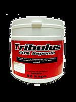 Activevites Tribulus 60%  Saponin (90caps)