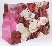 Бумажный пакет горизонтальный супергигант 54х38x20 DBV