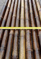 Бамбуковый ствол-К, д.4-5см, L3м, черный