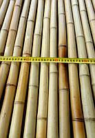 Бамбуковый ствол-К, д.3-4см, L4м, декоративный
