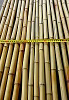 Бамбуковый ствол, д.2-3см, L2м, декоративный