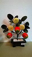 Денежное дерево (монеты \ 3 яблока)