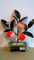 Денежное дерево (3 персика)