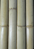 Планки, РБ, 3000х75х7 мм, светлые