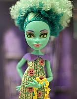Кукла Monster High Хани Свомп (Honey Swamp) Монструозные аксессуары Монстер Хай Школа монстров