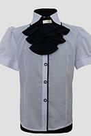 Шкільна блузка для дівчинки: 0350