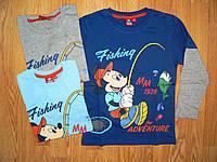 Регланы для мальчиков Disney, 98-128 р , фото 1