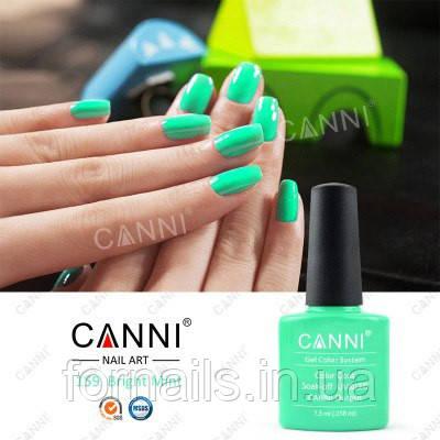 Гель-лак Canni 159
