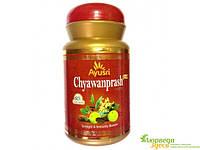 Чаванпраш особый, Сахул, для вас и ваших детей, Chyawanprash special Sahul, Аюрведа Здесь