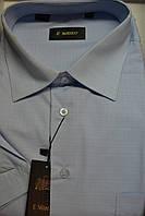 Мужская рубашка с коротким рукавом ENRICO (100% хлопок), фото 1