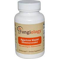 Агарикус Гриб Агарик Бразильский, антиоксидант, Fungiology, 90 растительных капсул