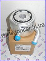 Радиатор масла Renault Kango I 1.5DCi 03- Polcar Польша 6060L8-1