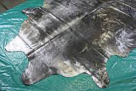 Шкура буйвола обработанная метализтрованой фольгой с эффектом потертостей, состаренные шкуры коров